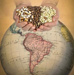 hands_beans_global_map_web_RoyKaltschmidt