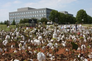 discovery to agriscience industry